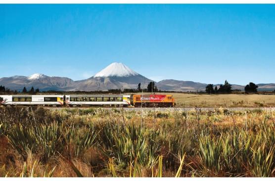 North Island Coach & Rail Holiday