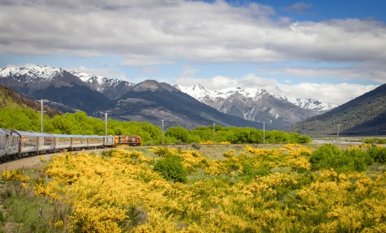 Discover Christchurch and Greymouth