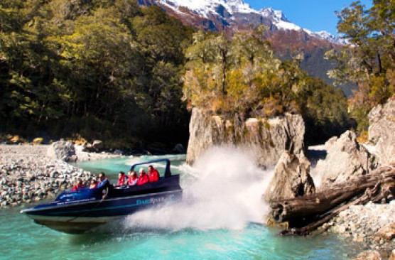 Dart River Wilderness Safari AM Tour - Queenstown Return