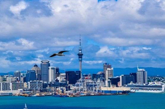 Auckland City Sights Tour & Habour Cruise