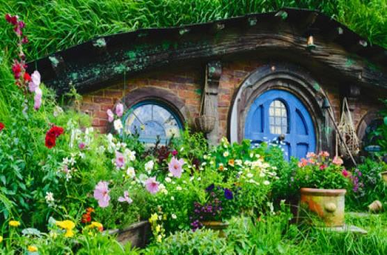 Hobbiton Movie Set PM Tour - Rotorua Return