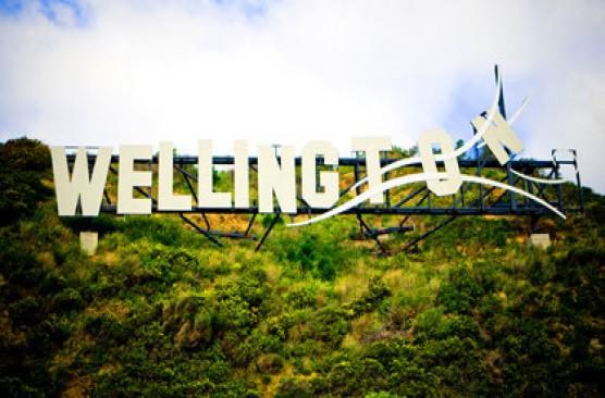 Wellington City and Bays Tour (morning)