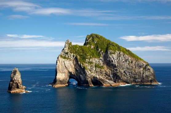 Bay of Islands Day Tour: Waitangi + Hole in the Rock Cruise + Lunch