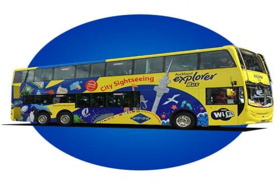 Auckland Explorer Bus 24 Hour Pass