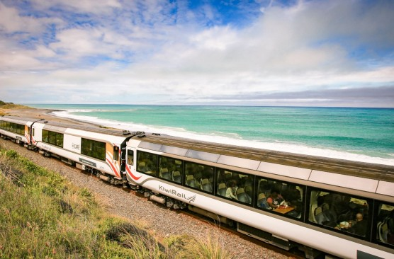 Coastal Pacific Day Excursion - Christchurch-Picton-Christchurch